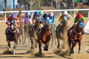 オグリキャップ。職業競走馬「プロフェッショナル仕事の流儀」